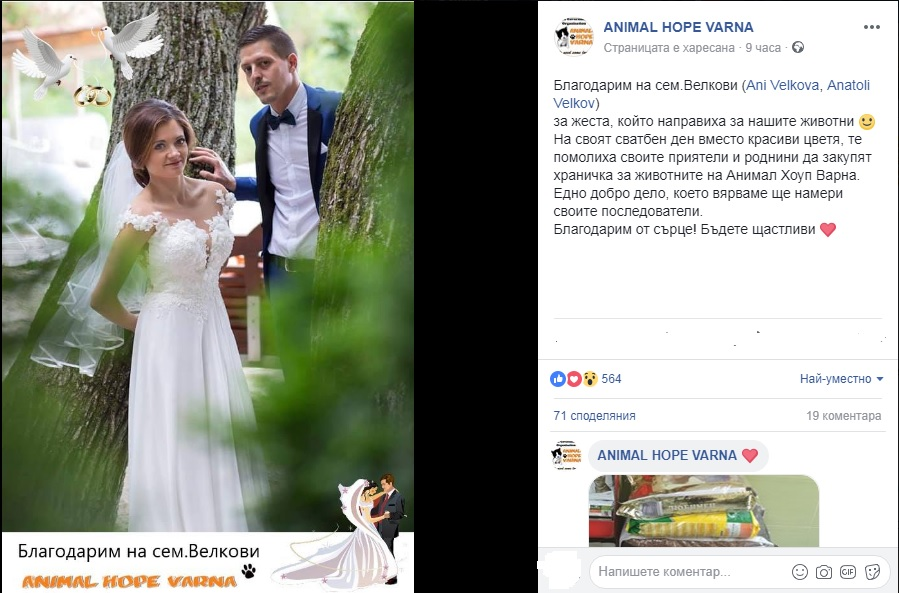 младоженци, анимал