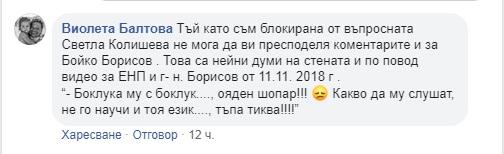 бойко, ставрева